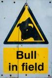 Segnale di pericolo del toro nel campo Fotografia Stock Libera da Diritti
