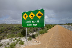 Segnale stradale australiano della fauna selvatica immagine stock