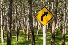 Segnale stradale che mostra una curvatura nella strada davanti all'albero di gomma p Immagini Stock