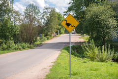 Segnale stradale d'avvertimento Fotografia Stock Libera da Diritti