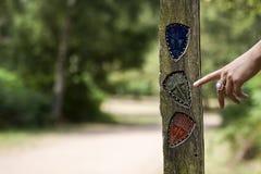 Segnale stradale di legno su un percorso di foresta Immagine Stock Libera da Diritti