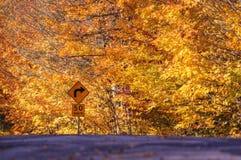 Segnale stradale rurale dei fogli di autunno Fotografia Stock