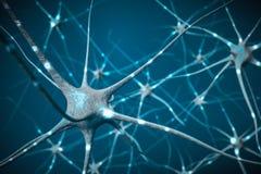 Segnali in neuroni in cervello, illustrazione 3D della rete neurale Immagini Stock