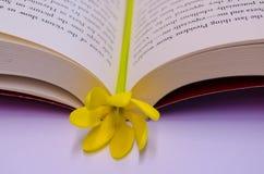 segnalibro del fiore Fotografia Stock
