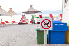 Segni che annunciano il divieto di cani sulla spiaggia Immagine Stock Libera da Diritti