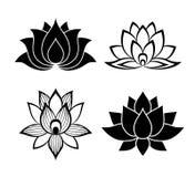 Segni del fiore di Lotus messi fotografie stock libere da diritti