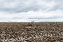 Segni del trattore e fango ad un acro bagnato, Baviera, Germania Immagine Stock
