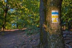 Segni della traccia di escursione Fotografia Stock