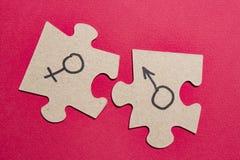 Segni di genere dell'uomo e della donna sui puzzle Concetto sessuale con le caratteristiche di sesso degli uomini e delle donne immagini stock