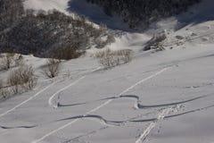 Segni di uno snowboard Fotografie Stock Libere da Diritti