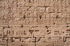 Segni egiziani Fotografia Stock Libera da Diritti