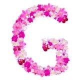 Segni il G con lettere dai fiori dell'orchidea isolati su bianco Immagine Stock Libera da Diritti