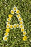 Segni l'alfabeto con lettere del fiore di A fotografia stock