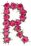 Segni l'alfabeto con lettere della R dai fiori delle rose, isolati su backg bianco fotografia stock libera da diritti