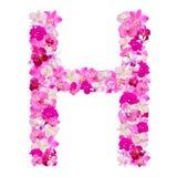 Segni la H con lettere dai fiori dell'orchidea isolati su bianco con Immagini Stock