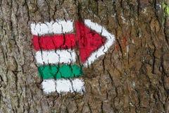 Segni per l'escursione sulla corteccia di un albero, a forma di freccia Immagini Stock