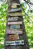 Segni su un albero fotografia stock libera da diritti