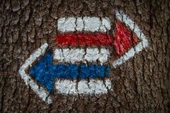 Segni variopinti per l'escursione sulla corteccia di un albero Fotografia Stock Libera da Diritti