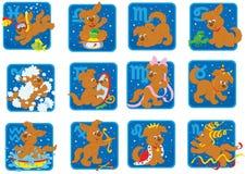 Segni zodiacali Immagine Stock Libera da Diritti