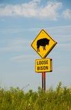 Segno allentato del bisonte sulla conserva della prateria Immagini Stock