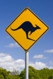 Segno australiano del canguro Immagini Stock