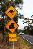 Segno australiano della strada campestre Immagine Stock