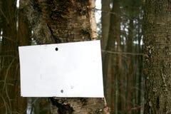 Segno in bianco sull'albero Fotografia Stock