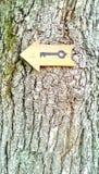 Segno chiave sull'albero Immagine Stock Libera da Diritti