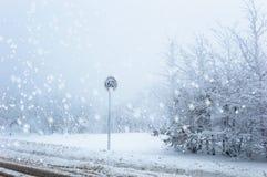Segno congelato limite di velocità su un fondo nevoso di inverno con neve di caduta immagini stock libere da diritti