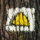 Segno d'escursione giallo sull'albero Immagine Stock