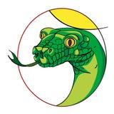 Segno del serpente Fotografia Stock