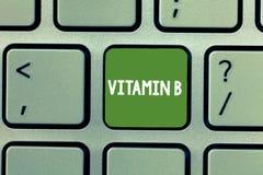 Segno del testo che mostra vitamina B Sostanza nutriente concettuale della foto che gli aiuti tengono il nervo ed i globuli del c immagine stock libera da diritti