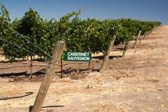 Segno del vino alla vigna di California Fotografia Stock Libera da Diritti