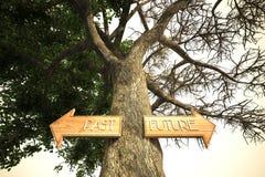 Segno dell'albero futuro di esperienza dell'ambiente illustrazione di stock