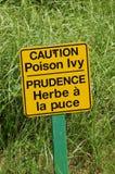 Segno dell'edera di veleno Fotografia Stock Libera da Diritti