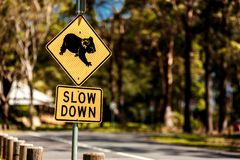 Segno dell'incrocio della koala fotografia stock