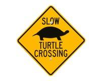 Segno dell'incrocio di strada della tartaruga Immagine Stock