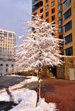 Segno dell'inverno. fotografia stock