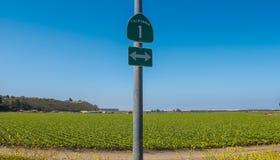 Segno dell'itinerario 1 & x28; California One& x29; Fotografia Stock