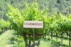 Segno dell'uva di Chardonnay immagini stock