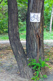 Segno della bicicletta sull'albero Fotografie Stock Libere da Diritti