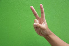 Segno della mano di forma di v per la campagna di voto Fotografia Stock
