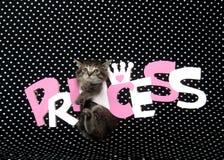 Segno della principessa e del gattino Fotografia Stock