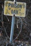 Segno della quercia di veleno ad un parco Immagine Stock Libera da Diritti