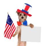 Segno dello spazio in bianco del cane di festa dell'indipendenza Fotografie Stock Libere da Diritti