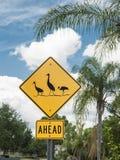 Segno di AheadCaution degli uccelli Fotografia Stock