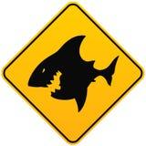 Segno di avvistamento dello squalo Fotografia Stock