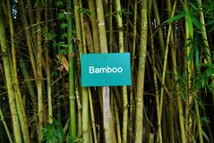 Segno di bambù Fotografia Stock