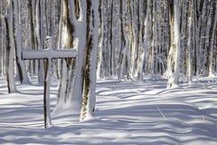 Segno di inverno Fotografie Stock Libere da Diritti