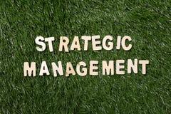 Segno di legno della gestione strategica su erba Immagine Stock